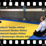 Aikido demonstracija – EMBUKAI 2018