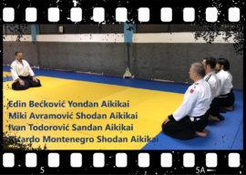 Aikido demonstracija – EMBUKAI 2018